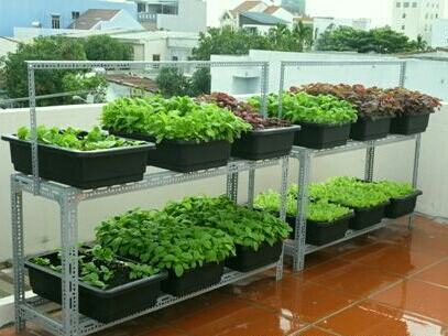 Kệ trồng rau sạch 2 tầng làm bằng thép V lỗ